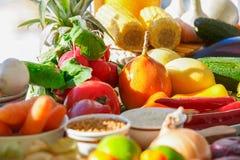 Geassorteerde vruchten en groenten in helder zonlicht royalty-vrije stock foto's