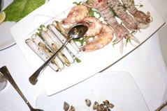 Geassorteerde Zeevruchtenplaat Stock Fotografie