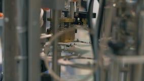 Geautomatiseerd kan verpakkend systeem Ingeblikt kan productielijn in de transportbandmachine van de fabriekslijn stock footage