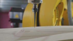 Geautomatiseerd woodcarver Carver met computer numerieke controle stock video