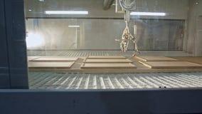 Geautomatiseerde houten het schilderen robot in een faciliteit van de meubilairproductie stock video