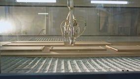Geautomatiseerde houten het schilderen robot in een faciliteit van de meubilairproductie stock footage