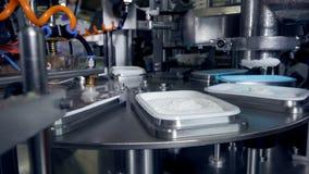 Geautomatiseerde productielijn van zuivelproducten bij kaasinstallatie stock videobeelden
