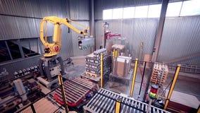 Geautomatiseerde Robotachtige Wapen Lading en het assembleren producten stock video
