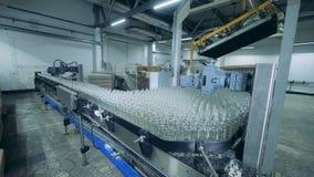 Geautomatiseerde transportband bewegende flessen in faciliteit bij alcoholinstallatie stock footage