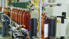 Geautomatiseerde transportbandlijn in druivenkas Plaatsetiketten op flessen wijn Industriële automatisering stock videobeelden