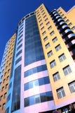 Gebäude-Chamäleon stockfotos