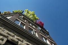 Gebäude des roten Backsteins und des Steins mit Bäumen auf seinem roo oben betrachten lizenzfreie stockfotos