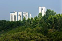 Gebäude durch den Wald Stockbilder
