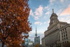 Gebäude in im Stadtzentrum gelegenem Toronto mit KN-Turm- und -herbstvegetation - Toronto, Ontario, Kanada Stockbilder