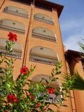 Gebäude u. Blumen Stockfotografie