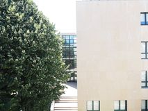 Gebäude und Baum Stockfotos