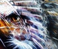 Gebürtige abstrakte Farbe versieht Hintergrund mit Adlerauge der wilden Tiere, Fractaleffekt mit Federn Stockfoto