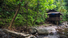 Gebürtige Hütte durch Dschungel-Nebenfluss stockbild