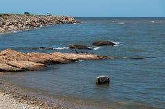Gebürtige Vögel auf den Felsen im Meer Stockfotos