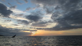 Gebürtiges Boot bei Sonnenuntergang auf dem Strand Lizenzfreie Stockfotos