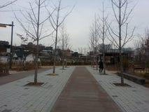 Gebaande voetweg met bomen aan kanten voor openbare gang royalty-vrije stock afbeelding