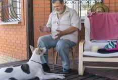 Gebaarde hogere besprekingen aan hond stock afbeelding