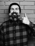 Gebaarde mens, brutale Kaukasisch geamuseerd hipster met gift decoratieve sterren stock afbeelding