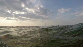 Gebaarde mens die op het overzees zwemmen stock video