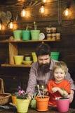 Gebaarde mens en weinig de liefdeaard van het jongenskind Familiedag serre gelukkige tuinlieden met de lentebloemen Bloemzorg stock afbeeldingen