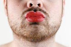 Gebaarde Mensen` s Mond met Rode Lippenstift op zijn Chubby Lips Royalty-vrije Stock Fotografie