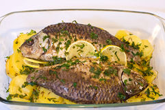Gebackene Fische Lizenzfreie Stockfotografie