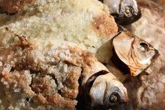 Gebackene Fische in der Salzkruste Stockbilder