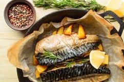 Gebackene Fischmakrele Stockbilder