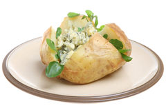 Gebackene Kartoffel mit Stilton Käse stockbild