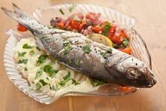 Fish! Welcher Fisch ist ungesund, auch fr Schwangere