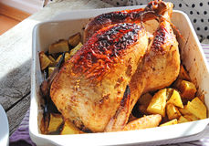 Gebackenes Huhn mit Kartoffeln in der weißen keramischen Schüssel Stockbild