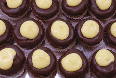 Gebakjes met chocolade en room royalty-vrije stock foto