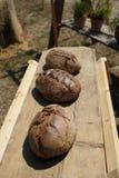 Gebakken die brood in een houten oven wordt gebakken stock afbeelding