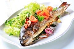 Gebakken forel met tomaten en groene salade stock afbeeldingen