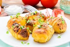 Gebakken jonge aardappels in kruiden en olie met arugula op een plaat Royalty-vrije Stock Afbeeldingen