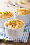 Gebakken macaroni met kaas stock afbeeldingen