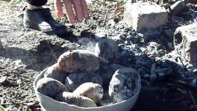 Gebakken op kampvuuraardappels stock video