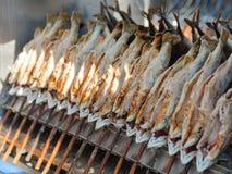 Gebakken op vleespennen scomber vissen Royalty-vrije Stock Fotografie