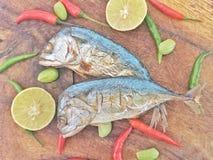 Gebakken Thaise Makreel met kruiden Stock Afbeeldingen