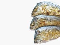 Gebakken Thaise Makreel op witte achtergrond Stock Afbeelding