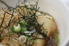 Gebakken Tofu Stock Foto