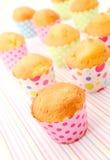 Gebakken vers cupcakes Stock Afbeelding