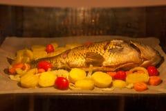 Gebakken vissen in de oven met groenten stock foto