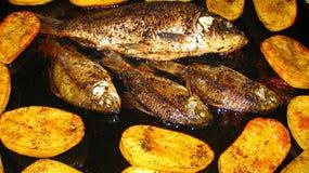 Gebakken vissen met aardappels Royalty-vrije Stock Foto's