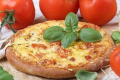 Gebakken vlak brood met tomaten, kaas, knoflook en Basilicum Royalty-vrije Stock Foto