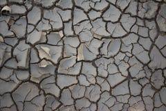 Gebarsten aarde bij de lente Achtergrond en textuur Stock Fotografie