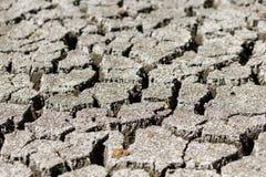 Gebarsten aarde na droogte Royalty-vrije Stock Afbeelding