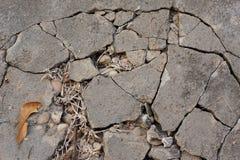 Gebarsten cementweg Royalty-vrije Stock Afbeeldingen