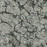 Gebarsten Concrete Muur. Naadloze Tileable-Textuur. Stock Foto's